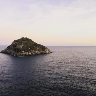 Swim the Island